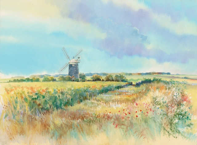 [Oilseed Rape by Burnham Overy Mill]