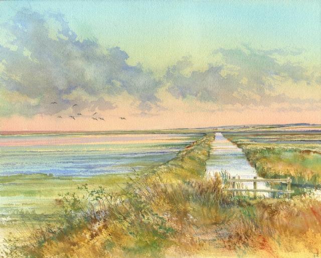 [Arnold's Marsh]