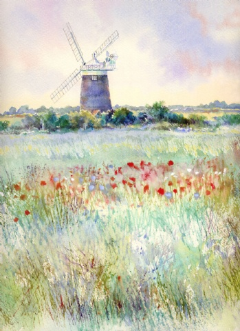 [Summer Meadow, Burnham Overy Mill]