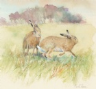 [March hares]