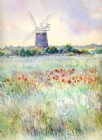 Summer Meadow, Burnham Overy Mill